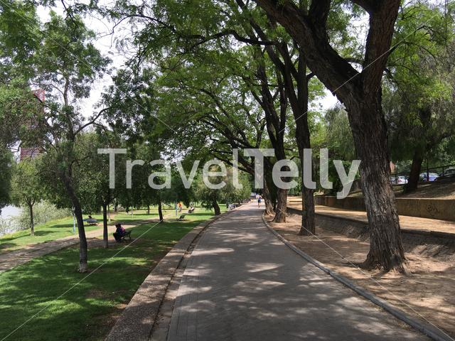 Path next to the Canal de Alfonso XIII in Seville Spain