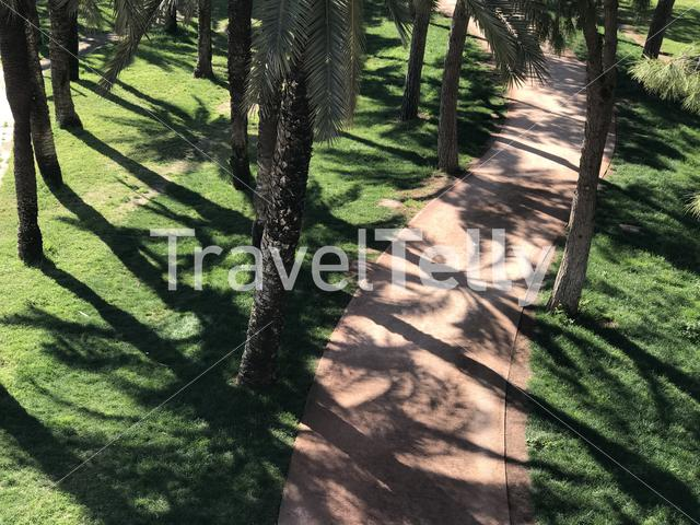Running path through the Gardens of Turia in Valencia Spain