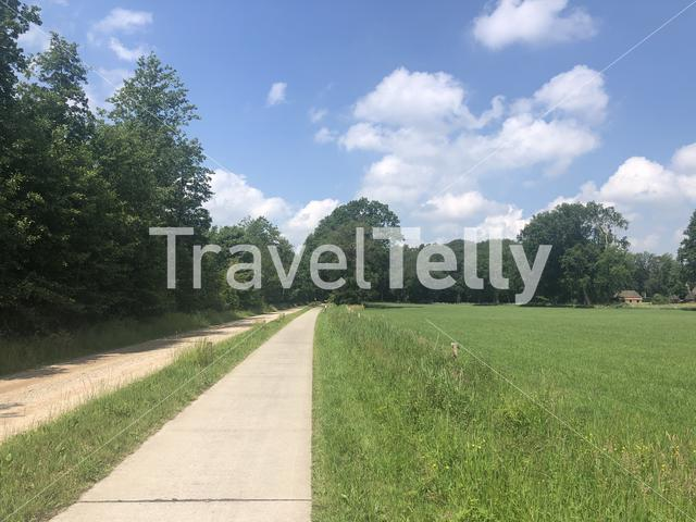 Bicycle path through the forest around Archem in Overijssel, The Netherlands