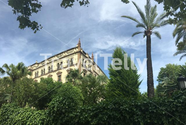 Hotel Alfonso XIII, a Luxury Collection Hotel in Seville Portugal