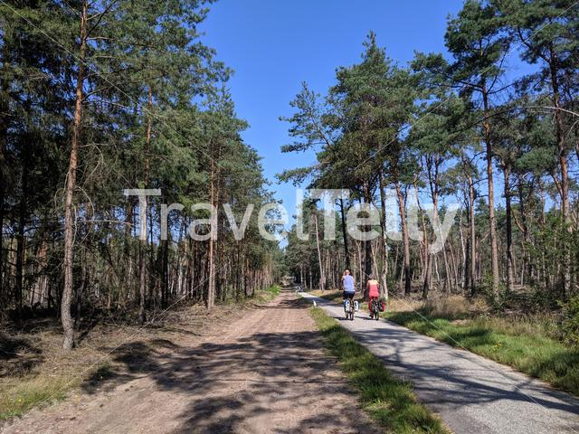Couple cycling through the forest at the Sallandse Heuvelrug in The Netherlands