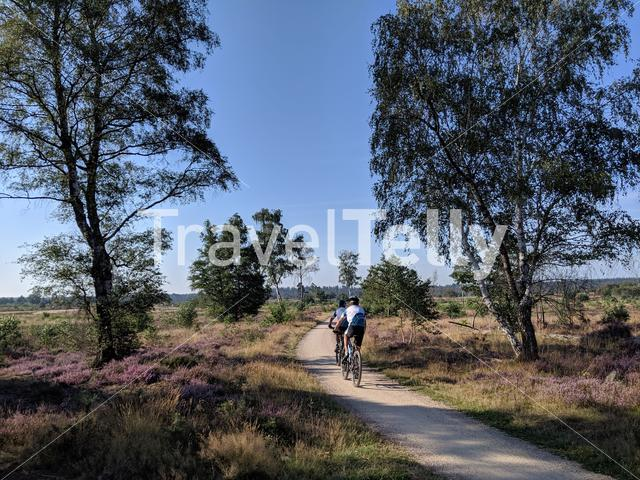 Mountainbiking at the National Park Sallandse Heuvelrug in The Netherlands