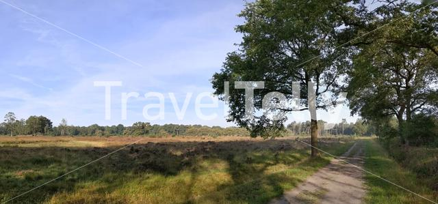 Nature reserve around Den Ham, Overijssel, The Netherlands