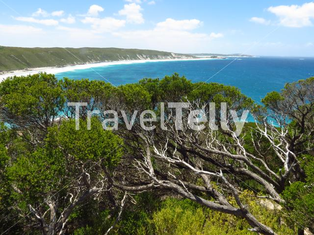 View from observatory point at the Great Ocean Drive Esperance