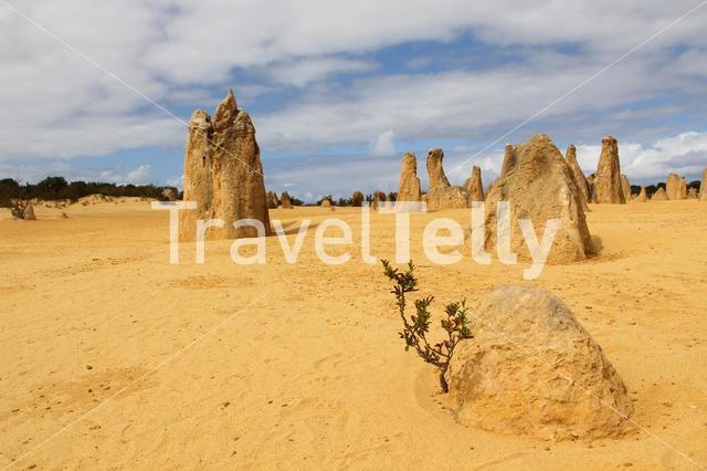 The Pinnacles are limestone formations contained within Nambung National Park, near the town of Cervantes, Western Australia, Australia.