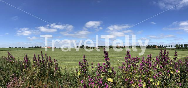 Panorama from farmland around the village Easterwierrum in Friesland The Netherlands