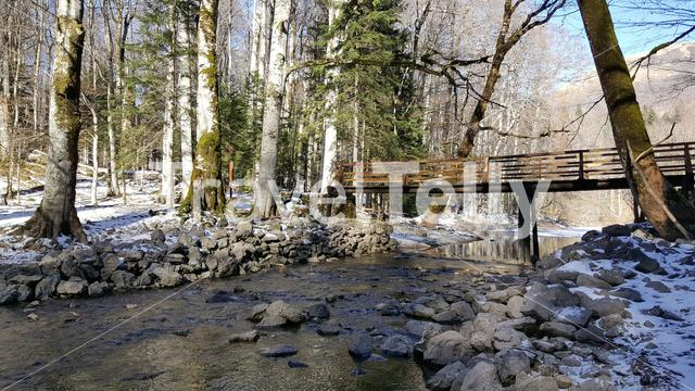 Bridge over a river in Biogradska Gora a forest and a national park in Montenegro