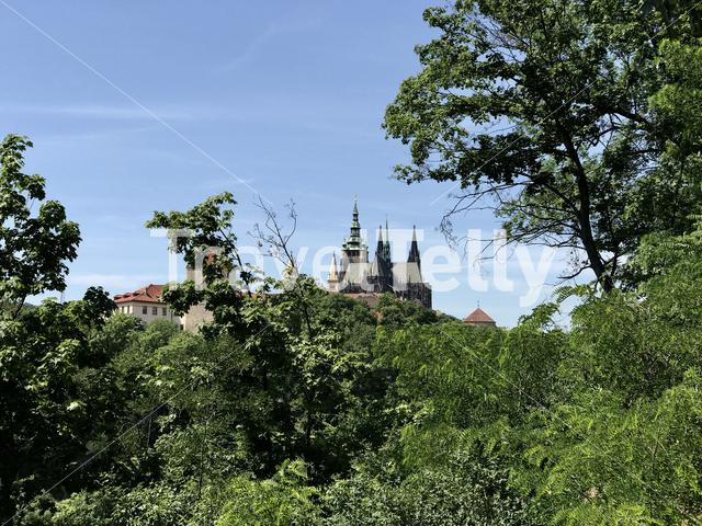 St. Vitus Cathedral seen from the Deer Moat parc in Prague Czech Republic