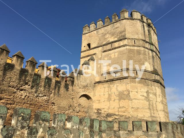A tower at the Walls of Seville Spain