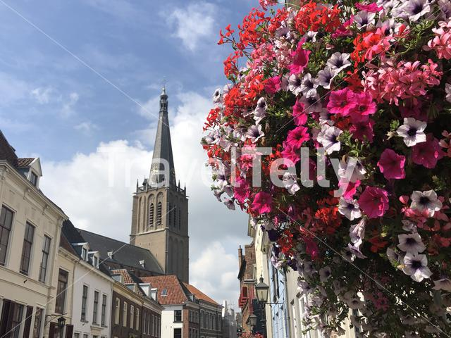 Flowers in the street of Doesburg, The Netherlands