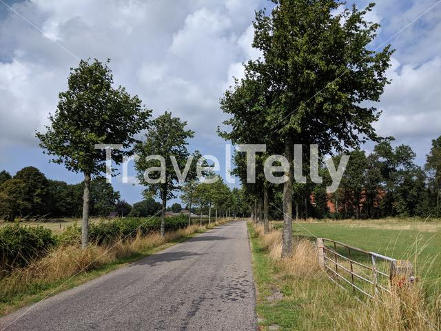 Landscape around Bakhuizen in Friesland The Netherlands