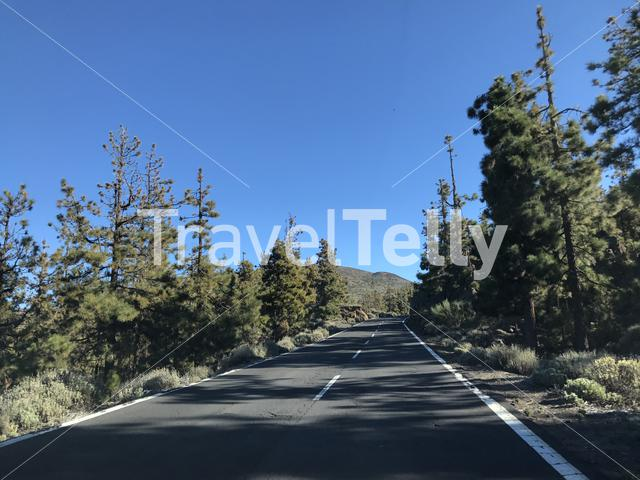 Road through Teide National Park at Tenerife Canary Islands