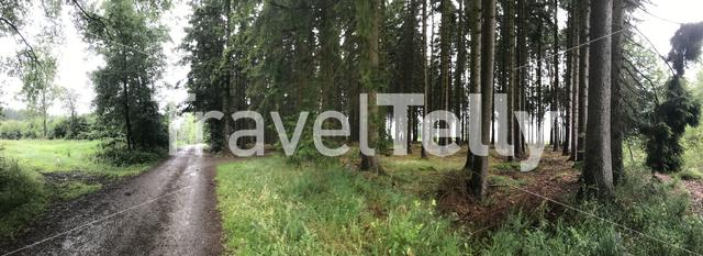 Panorama from a path and forest around Recht in Belgium