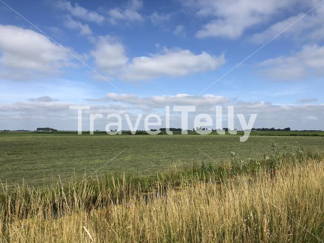 Farmling landscape in Friesland, The Netherlands