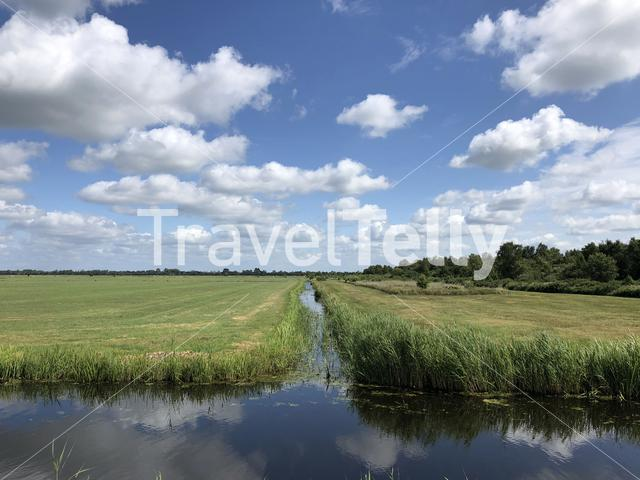 Farmland around Earnewâld in Friesland The Netherlands