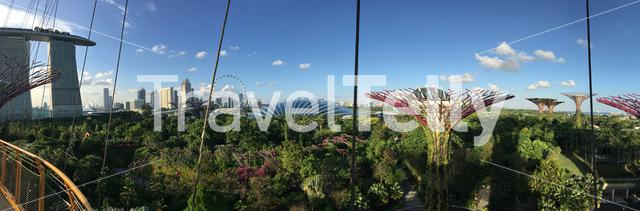 Panorama from supertree Grove at Gardens by the Bay in Singapore