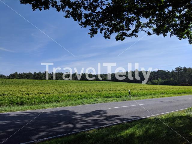 Scenery and road around Itterbecker in Germany