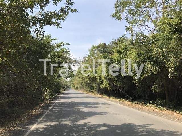 Road towards Phanom Sawai Forest Park Thailand