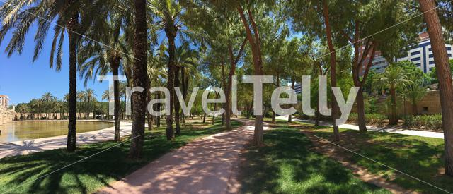 Panorama from the Turia gardens in Valencia Spain