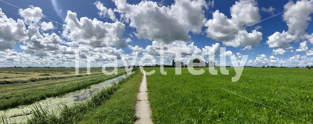 Path through farmland around Blessum in Friesland The Netherlands