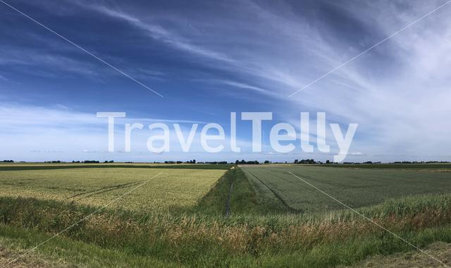 Farmland panorama around Oudebildtzijl in Friesland The Netherlands