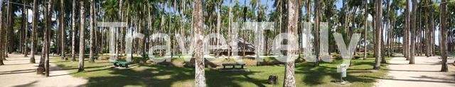 Panorama from the Palm Gardens in Paramaribo Suriname