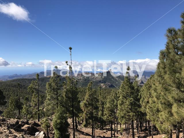 View from Pico de las Nieves the highest peak of the island of Gran Canaria