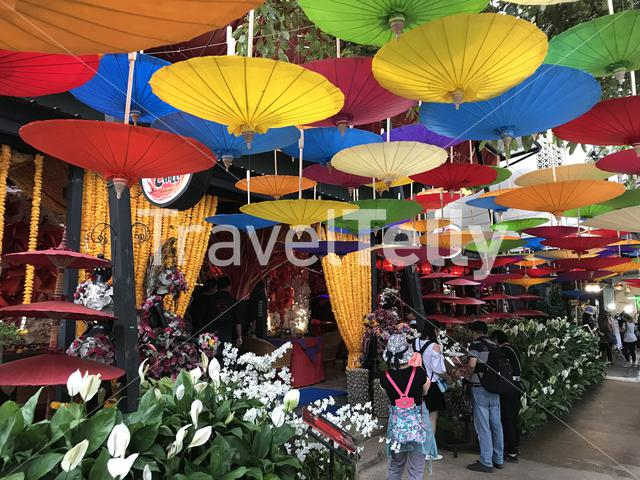 Flower market in Chiang Mai