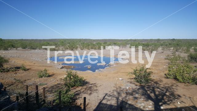 Small waterpool in Etosha National Park in Namibia