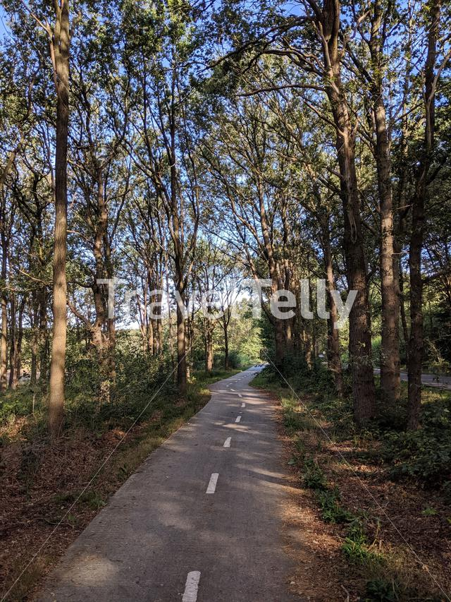 Cycle path around Mantinge in Drenthe, The Netherlands