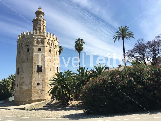 Puente San Telmo with the Torre del Oro in Seville Spain