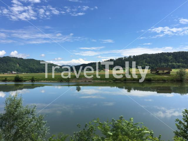 Tree reflection in the Sava river at the countryside of Slovenia