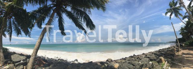 Panorama from the coast with palmtrees and rocks in Sri Lanka