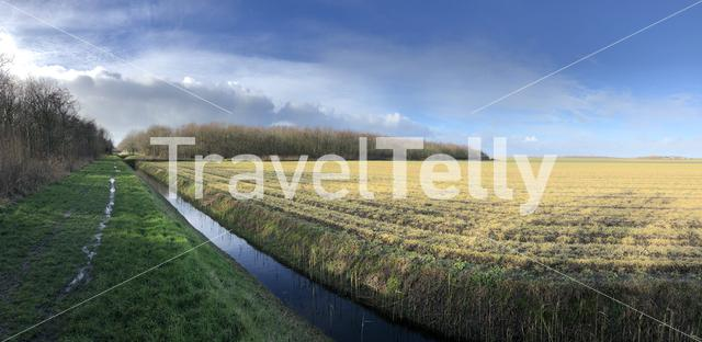 Panorama landscape from Texel island in The Netherlands