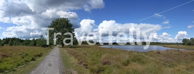 Panoramic landscape from the Drents-Friese Wold National Park in The Netherlands