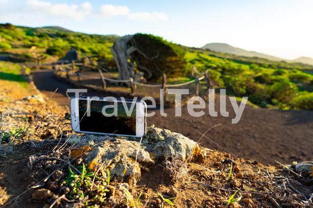 Taking a photo from the Sabinar tree on the island El Hierro