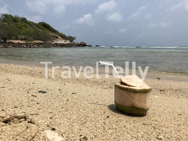 Coconut on the beach of Koh Samet island in Thailand