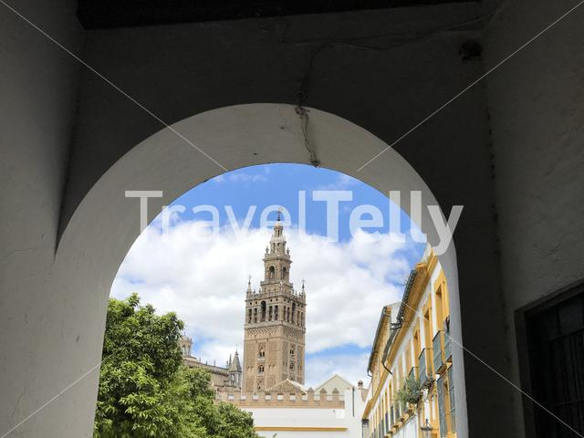 The Giralda (bell tower) of the Seville Cathedral in Seville