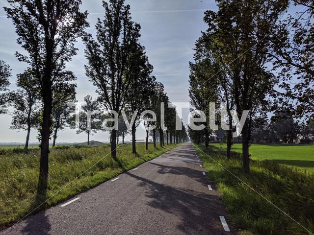 Road towards Follega in the morning, Friesland, The Netherlands