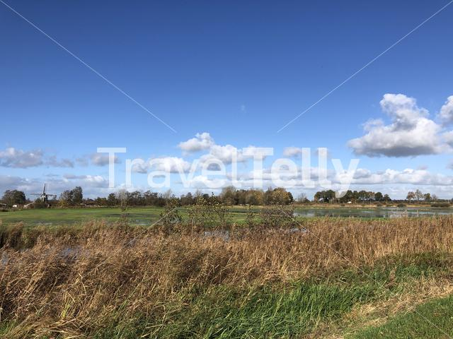 Nature reserve with a windmill around Wolvega in Friesland, The Netherlands