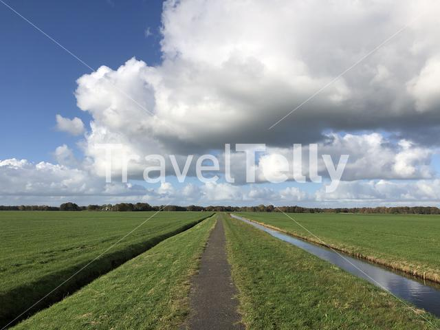 Path through grassland towards Nieuwehorne in Friesland, The Netherlands