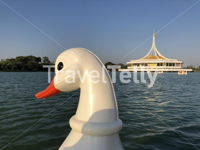 Swan Paddle Boat at the King Rama IX Park in Bangkok, Thailand