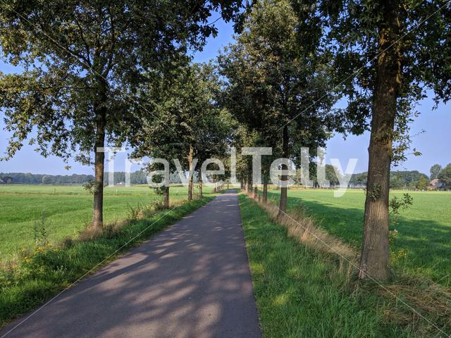 Road around Linde in The Netherlands