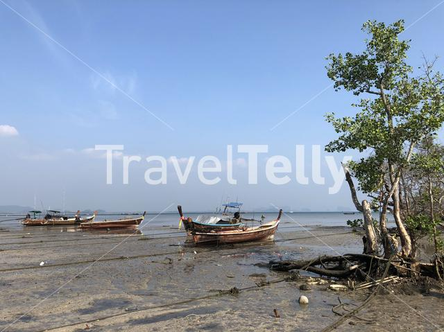 Long-tail boats during low tide on Koh Mook island Thailand