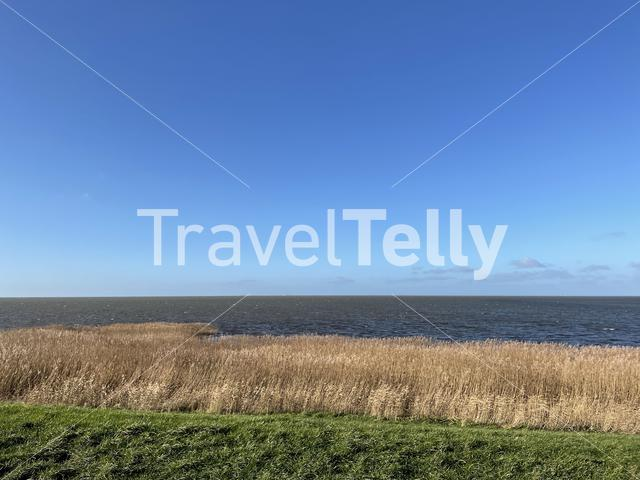 IJsselmeer around Gaast in Friesland, The Netherlands