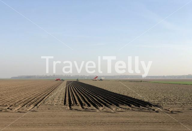Farmers at work in The Netherlands