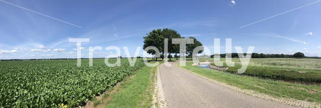 Farmland panorama and road around Rheezerveen in Overijssel The Netherlands