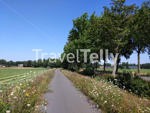 Road and farmland around Elsloo in Friesland The Netherlands