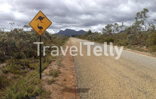 Kangaroo and ostrich sign net to a road in Stirling Range National Park in Western Australia