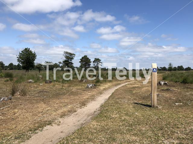 Mountainbike path in the Drents-Friese Wold around Appelscha, Friesland The Netherlands
